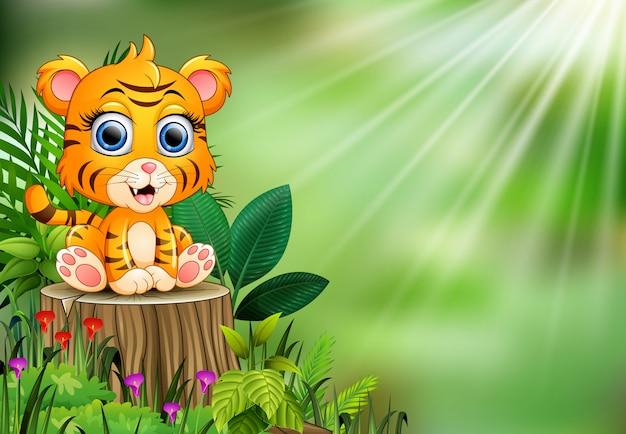 Fumetto della tigre del bambino che si siede sul ceppo di albero con le piante verdi