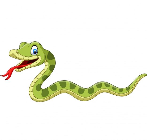 Fumetto sveglio del serpente verde isolato