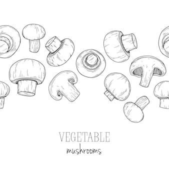 Funghi, champignon su sfondo bianco. illustrazione nello stile di abbozzo.