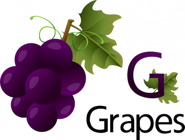 G font with grapes