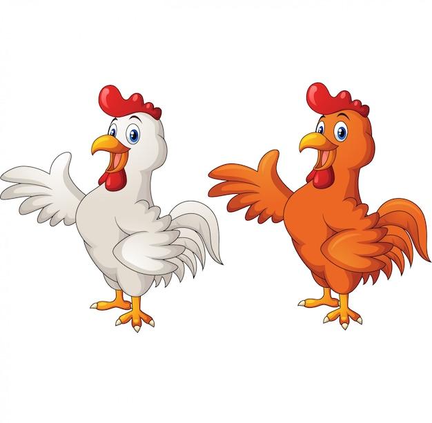 Gallo del fumetto in due colori diversi