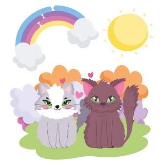 Gatti adorabili che si siedono negli animali domestici di tema del sole dell'erba