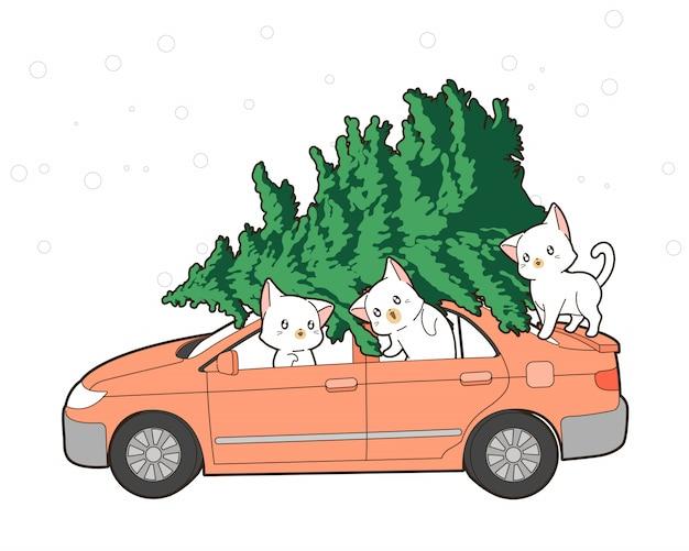 Gatti svegli con l'albero di natale su un'automobile