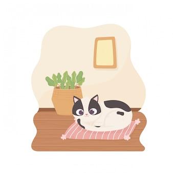 Gatto dell'animale domestico che riposa sul canestro dell'ammortizzatore con l'illustrazione del fumetto delle piante