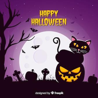 Gatto nero che si siede su una zucca intagliata