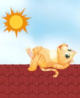 Gatto pigro sul tetto