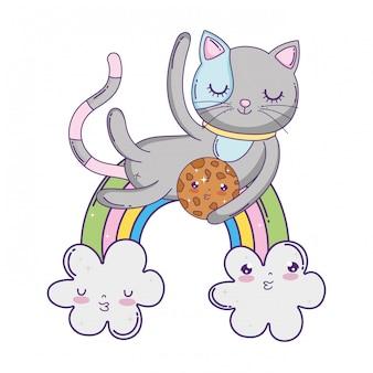 Gatto sveglio con biscotto in arcobaleno