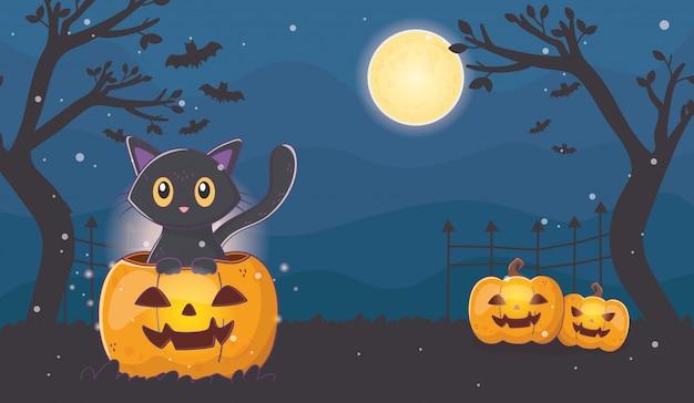 Gatto sveglio con le zucche di lanterne halloween