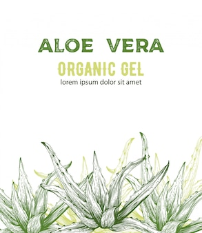 Gel organico di aloe vera con disegni in stile line art