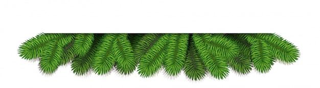 Ghirlanda di bordo di pino di natale.