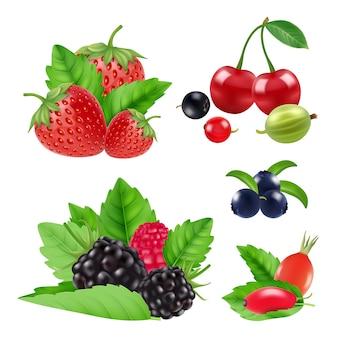 Giardino realistico e frutti di bosco. raccolta di more, lamponi, mirtilli e ciliegie