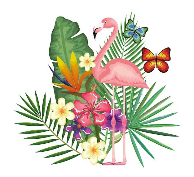 Giardino tropicale ed esotico con fiamminghi