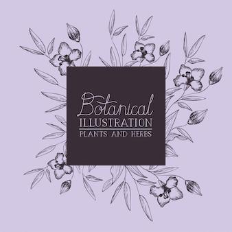 Giglio fiori decorativi cornice quadrata