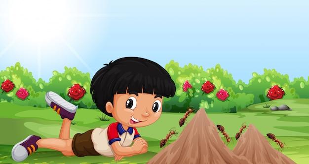 Giovane ragazzo con un tumulo di formiche