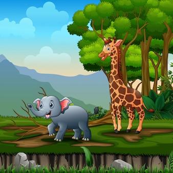 Giraffa ed elefante del fumetto che giocano nella giungla