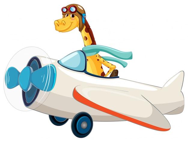 Giraffa in sella a un aeroplano
