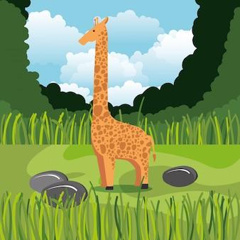 Giraffa selvaggia nella scena della giungla