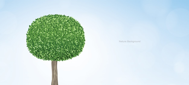 Giro astratto dell'albero verde con cielo blu.