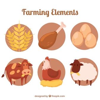 Gli animali della fattoria con prodotti biologici