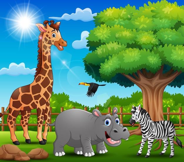 Gli animali si stanno godendo la natura dalla gabbia