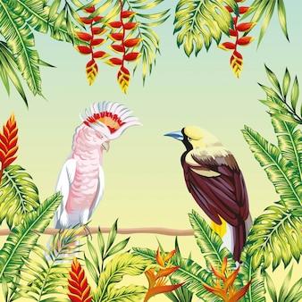Gli uccelli tropicali incorniciano foglie e fiori