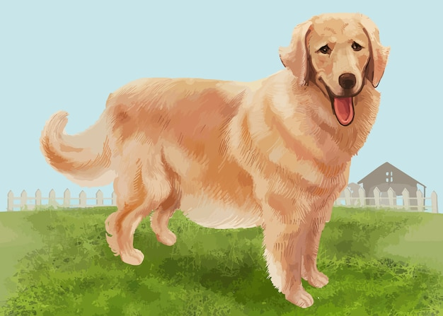 Golden retriever disegnato a mano