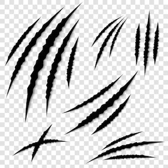 Graffi delle zampe dell'artiglio. scratch di orrore animale.