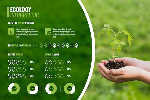Grafico di infografica piantina ecologia verde