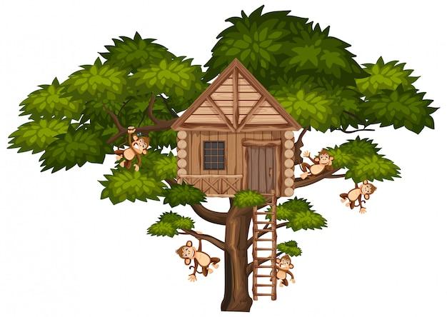 Grande albero con casa sull'albero e molte scimmie sui rami