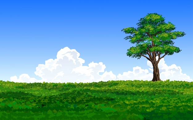 Grande albero di loney nel campo verde
