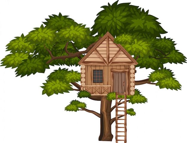 Grande albero e grande casa sull'albero