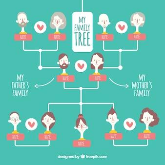 Grande albero genealogico con dettagli di colore