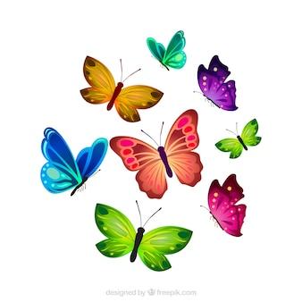 Grande collezione di farfalle realistici