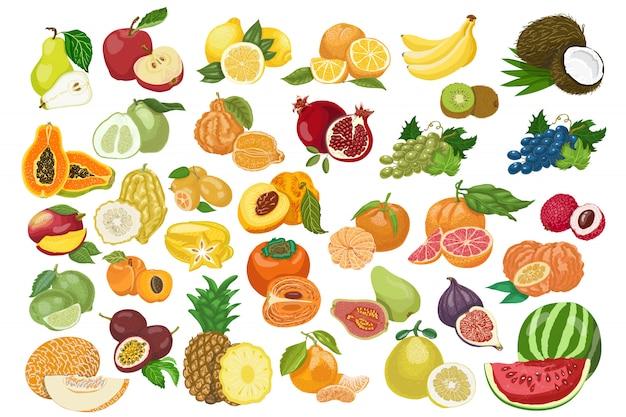 Grande collezione di frutti isolati