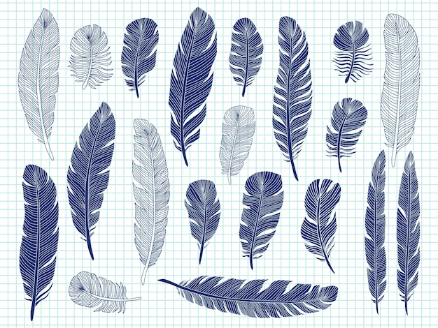 Grande insieme delle piume di uccello del disegno della penna a sfera sul taccuino