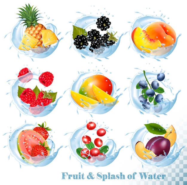 Grande raccolta di frutta nelle icone di una spruzzata dell'acqua. ananas, mango, pesca, guava, mirtillo, prugne, fragola, mirtillo, lampone, mora. impostato