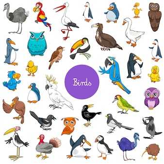Grande set di caratteri animali cartoni animati di uccelli