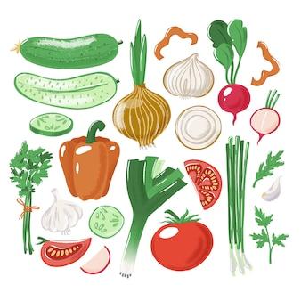 Grande set di verdure intere, tagliate e tagliate pomodoro cetriolo peperone cipolla aglio porro prezzemolo ravanello