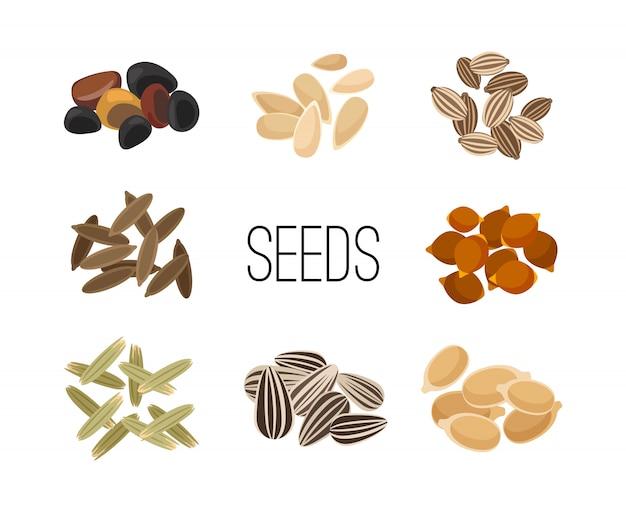 Grani e semi isolati su bianco