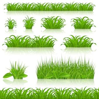 Green grass imposta illustrazione