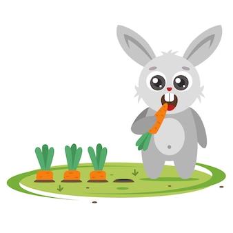 Grey bunny spedisce le carote nel giardino. parassiti agricoli. personaggio piatto illustrazione.
