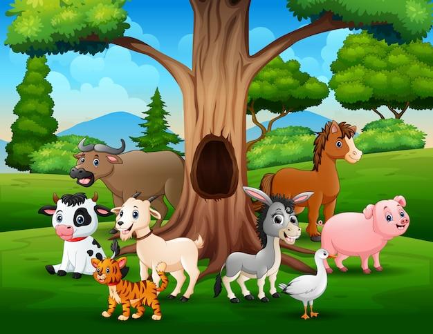 Gruppo di animali da fattoria sotto il paesaggio di albero cavo