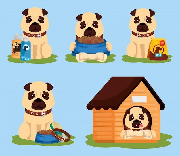 Gruppo di cani con icone