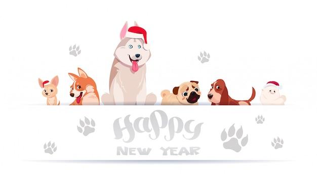 Gruppo di cani svegli che si siedono sul fondo bianco con le stampe del piede che indossano il buon anno asiatico di santa hat