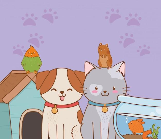 Gruppo di piccoli personaggi mascotte