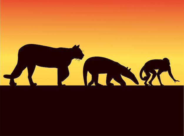 Gruppo di sagome di animali selvatici nell'illustrazione del paesaggio al tramonto