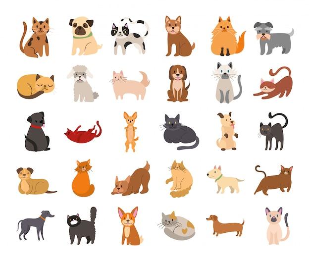 Gruppo di set di icone di cani e gatti