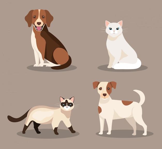 Gruppo di simpatici cani e gatti