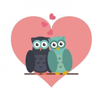 Gufi in amore cartoni animati carini