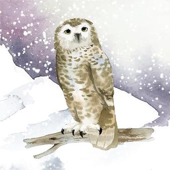 Gufo delle nevi nel vettore di stile dell'acquerello di inverno